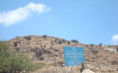 Universitarios voluntarios realizan limpieza de la zona arqueológica de Pillu, ubicada en Socabaya