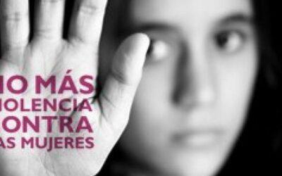 Arequipa: Presentan acciones para prevenir la violencia contra la mujer e integrantes del grupo familiar